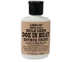Mule Deer Doe in Heat Estrus Urine