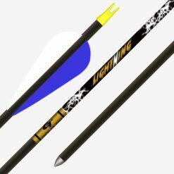 Gold Tip Lightning Youth Arrow