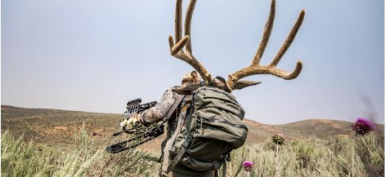 Shop All - Mystery Ranch Hunting Backpacks
